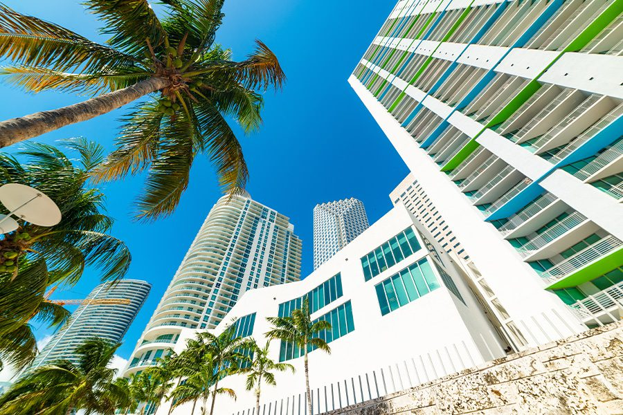 Business Insurance - Skyscrapers and Palm Trees in Downtown Miami on a Sunny Day