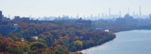 Westchester NY Insurance - Greenery On A Fall Day With The Skyline Of NYC In The Distance