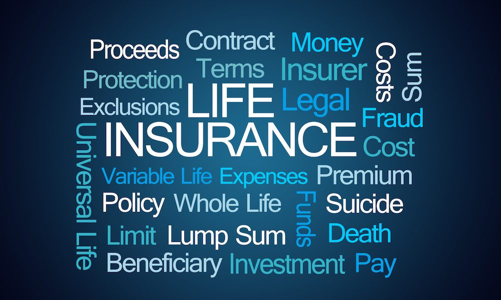 text grid of life insurance related words
