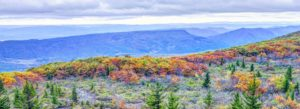 Header - Scenic Mountain Views in Virginia