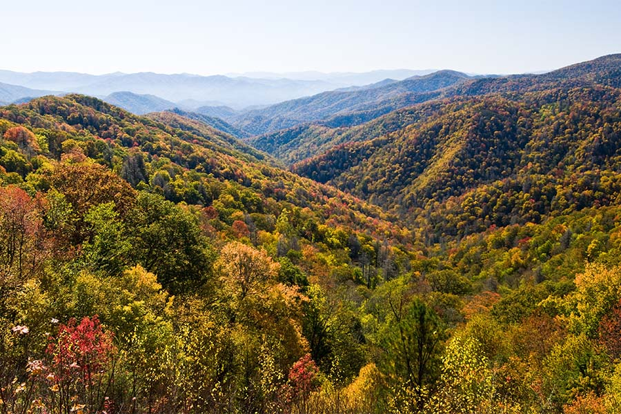 Tennessee - View of the Smoky Mountains During the Fall in Eastern Tennessee