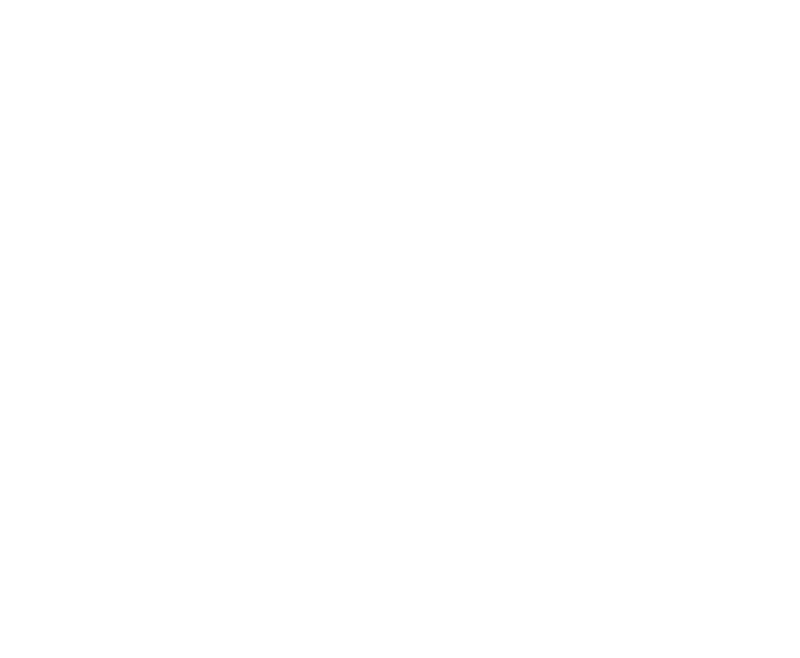 Leitch-McSorley Insurance Agency, LLC - Logo White