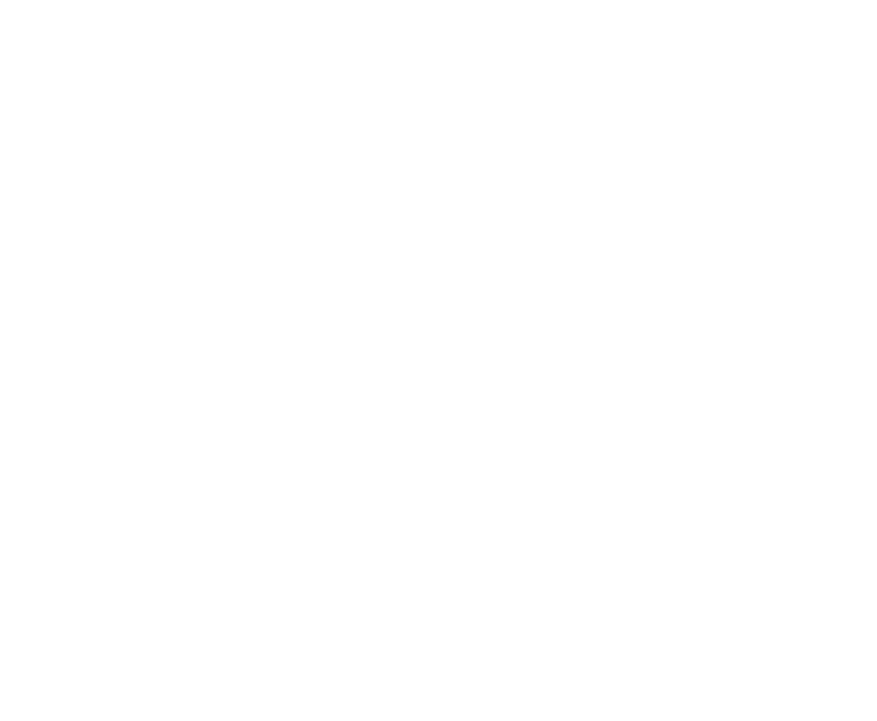 Leitch Insurance Agency, Inc. - Logo White