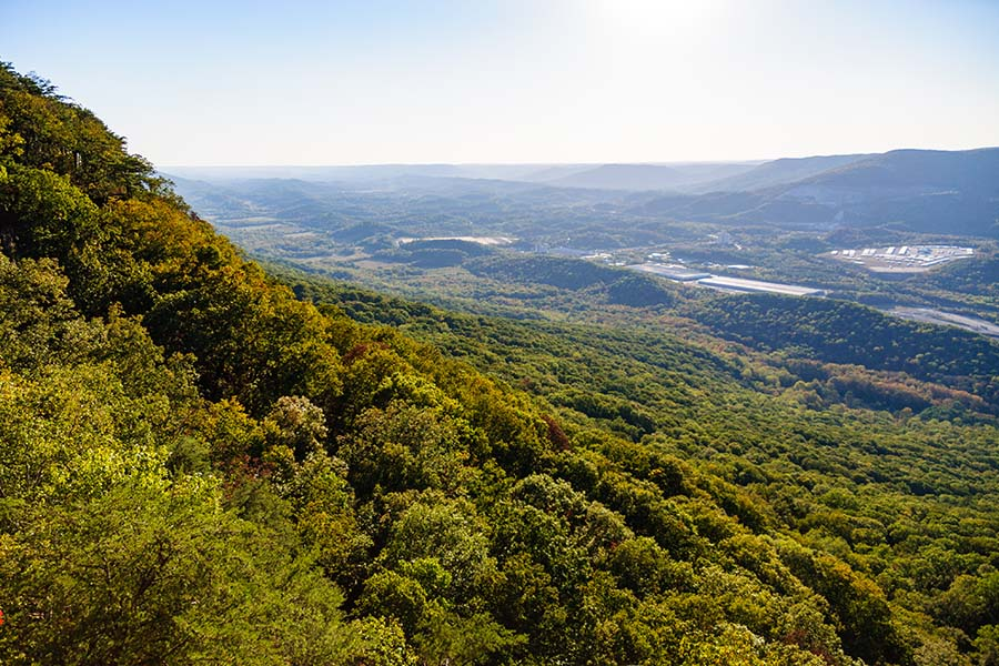 About Our Agency - View of Lookout Mountain and Surrounding Landscape Full of Green Trees in the Summer