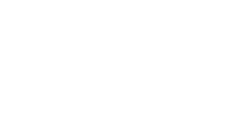 Pallant-Insurance-Agency-Logo-800-White