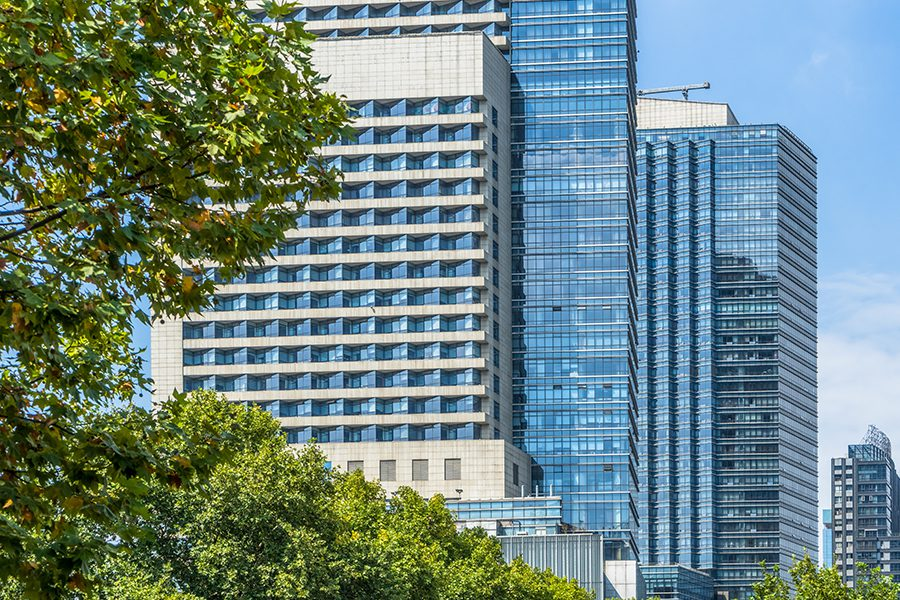 Business Insurance - Green Trees in Front of Modern Glass Office Building On a Bright Sunny Day