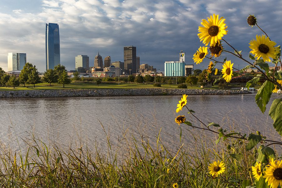 Contact - View of Oklahoma City in the Background Across from a River With Sunflowers in the Foreground