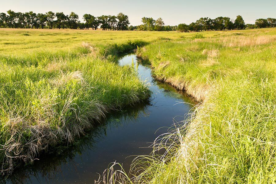 Ohio Insurance - Small Shallow Creek Cuts Through a Low Grassy Field, Trees in the Distance