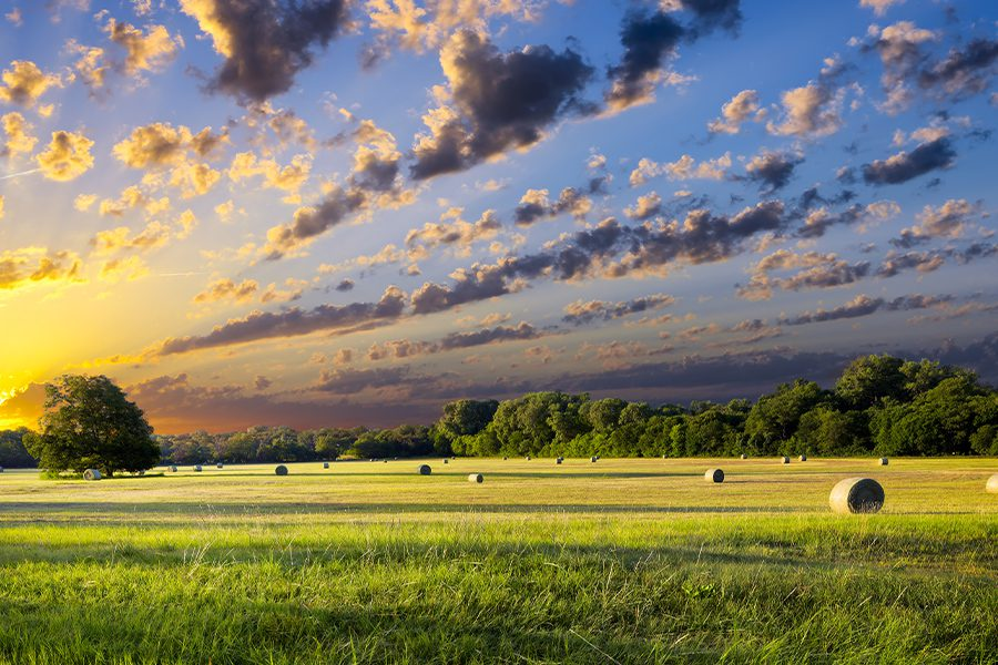 Specialized Business Insurance - Portrait of a Farm in Texas With Rolling Bales of Hay with Clouds and Sun in the Background at Dusk