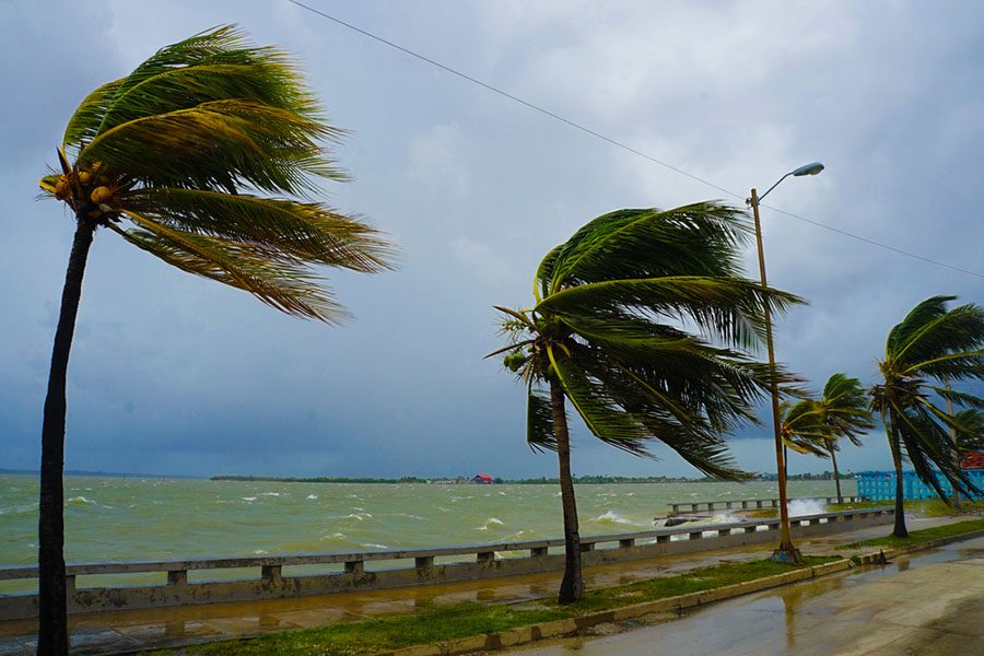 Resources - View of Hurricane Winds Affecting Coast of Florida