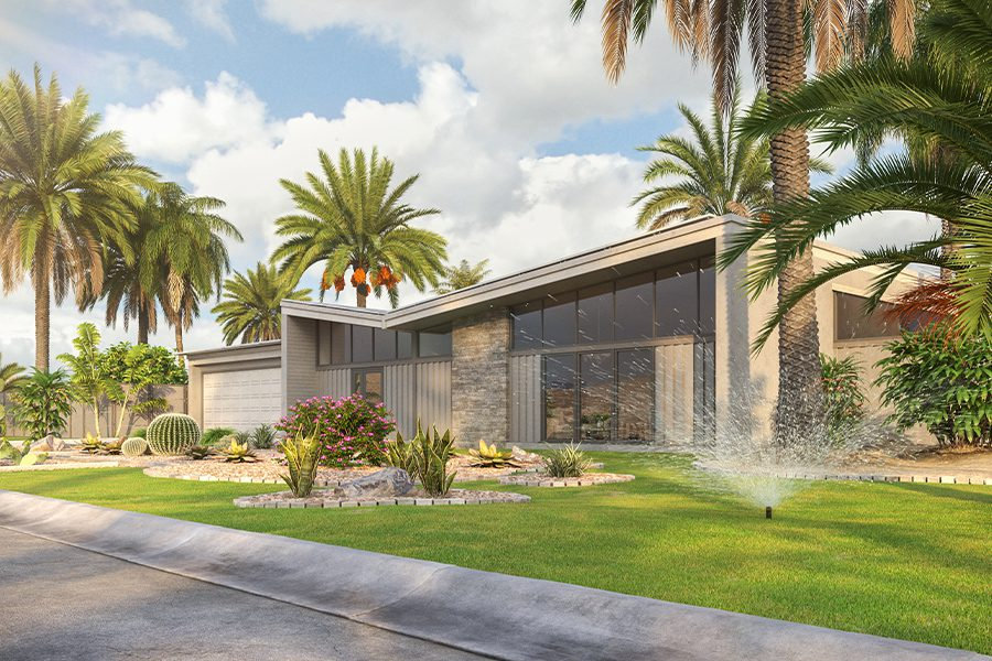 Anaheim Hills, CA - Modern House in Desert California Environment with Palms Trees