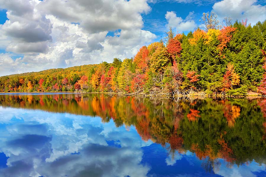 Contact - View Of Blue Sky And Trees Along River In Kingsort Tennessee During Fall