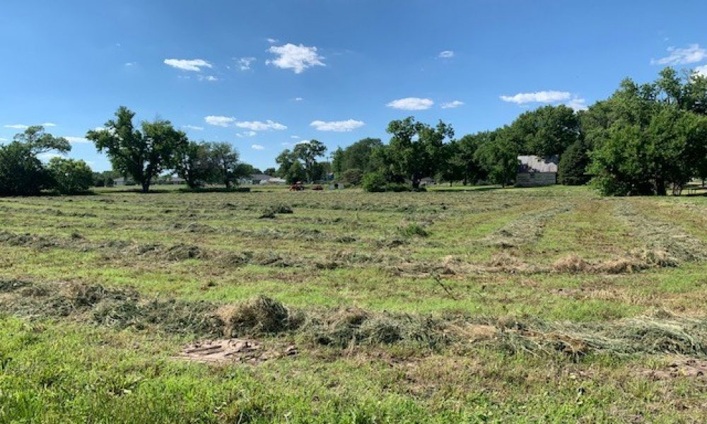 Walnut And Division, Red Cloud, Nebraska 68970, ,Land,For Sale,And Division,1038