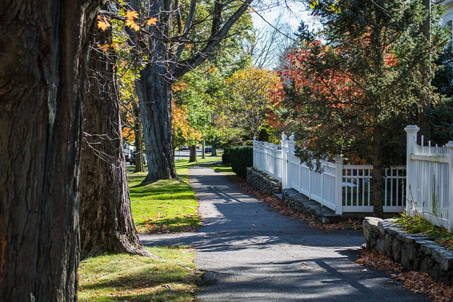Cheshire, CT - Tree Covered Walkway Through Small Town in Connecticut