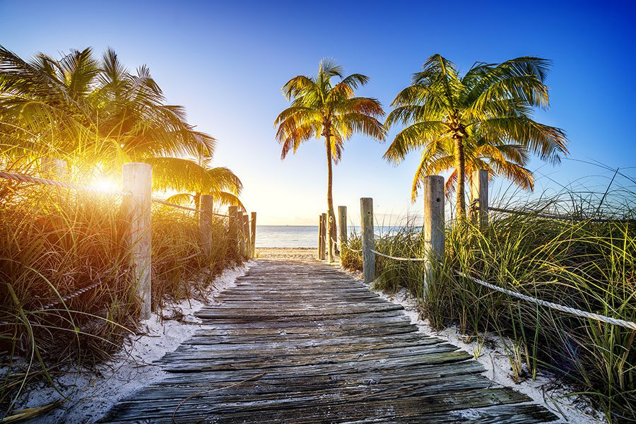About Us - Palm Tress and Wooden Path Leading to Beach
