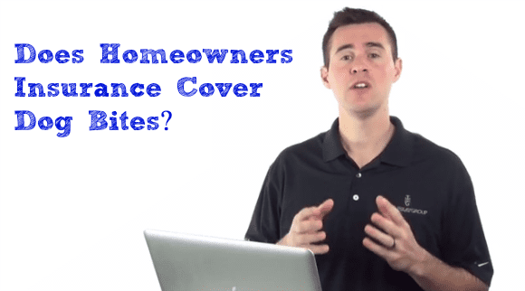 Does homeowners insurance cover dog bites