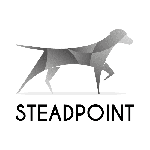 Stead Point Group