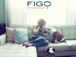 Pet Insurance-banner-woman-couch-dog