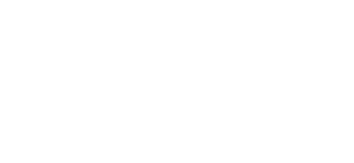 Chase Insurance Group, Inc