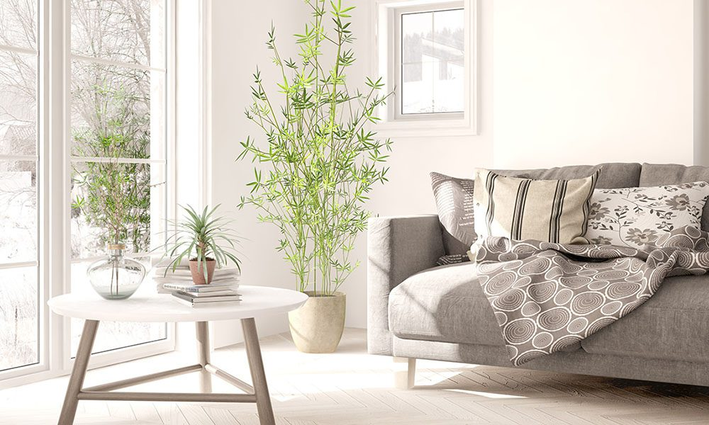 Blog - Is Your Home Insured Properly? - White Modern Home With Large Window and Sofa