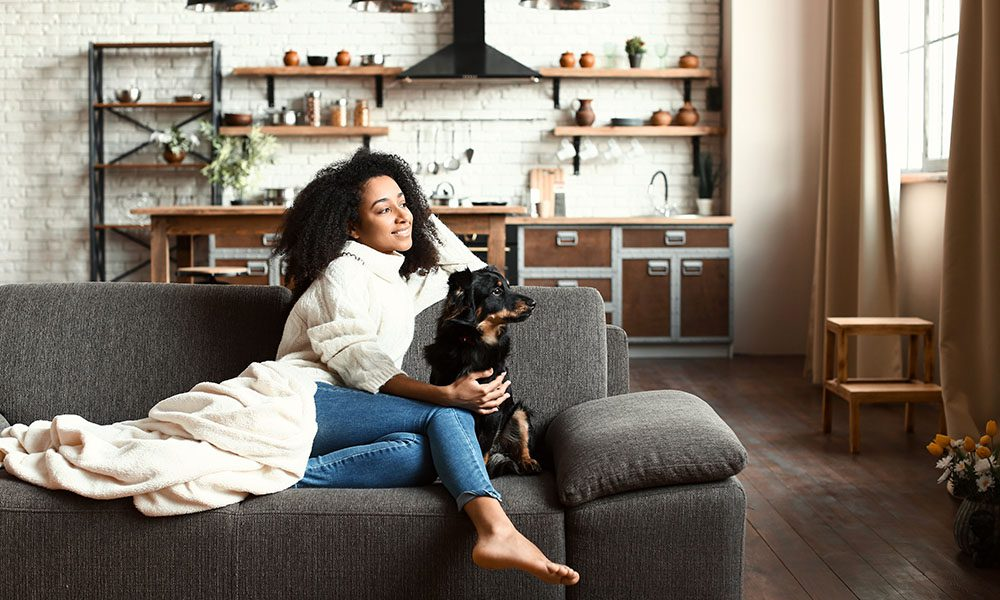 Blog - Rising Cost of Building Materials and Your Homeowners Insurance - Woman Sitting On Her Couch In Her Moden Home With Her Cute Dog