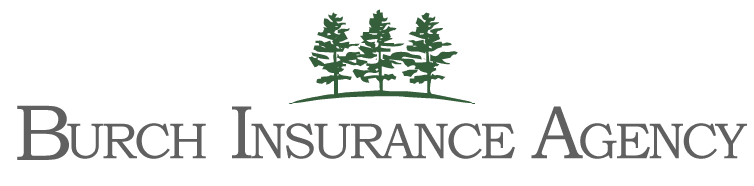 Logo-Burch-Insurance