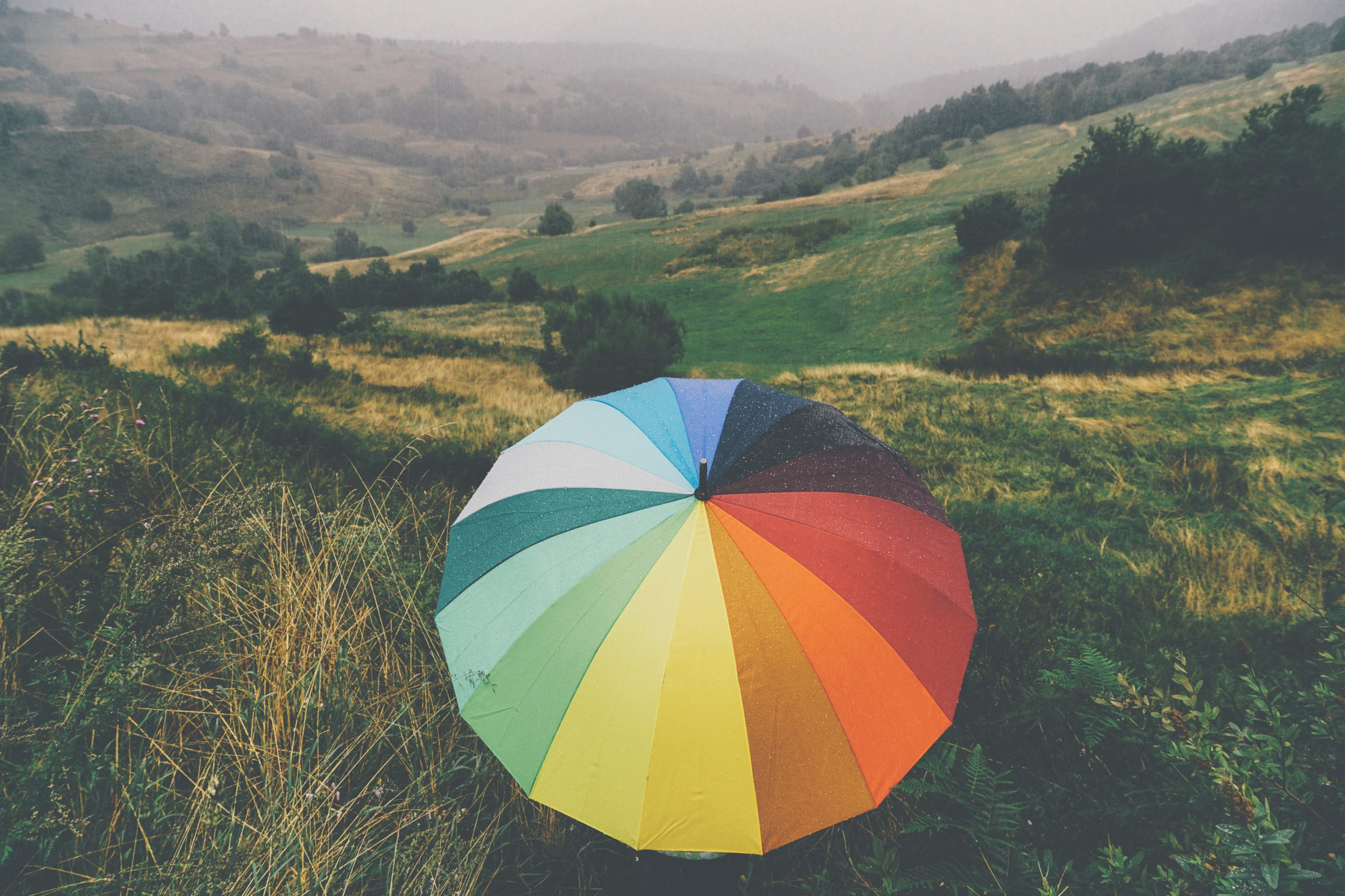 Rainbow umbrella in a rainy field