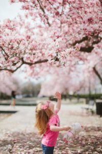 little girl playing under cherry blossom tree