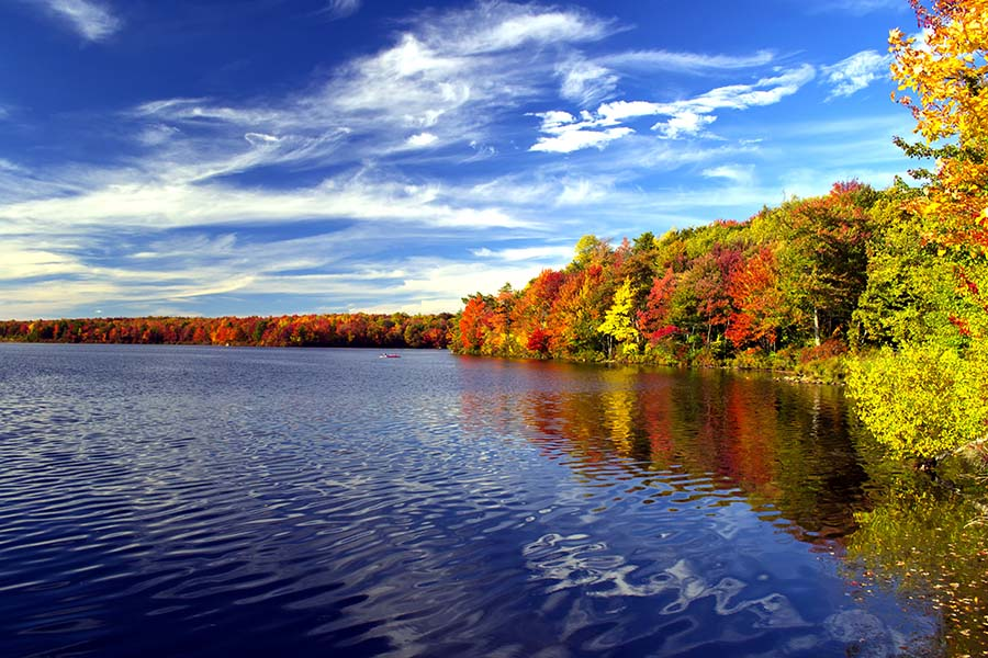 Montgomeryville PA - View of Clear Lake and Forest in Montgomeryville Pennsylvania