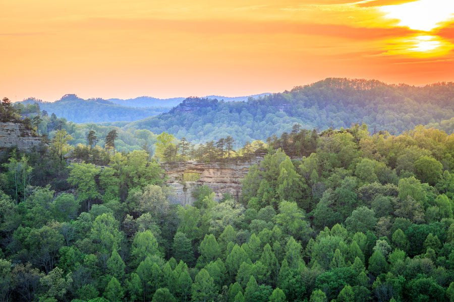 Contact Us - View of Daniel Boone National Forest in Kentucky with a Sunset