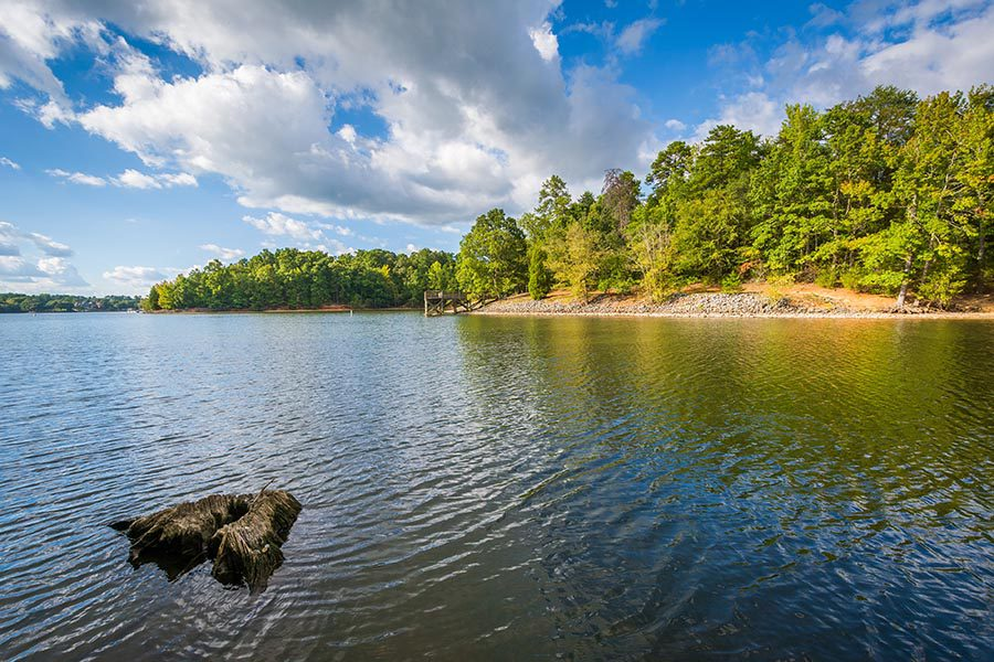 North Carolina and South Carolina Insurance - Beautiful Lake With Green Trees and Pebble Shores, White Fluffy Clouds Passing Overhead in a Bright Blue Sky