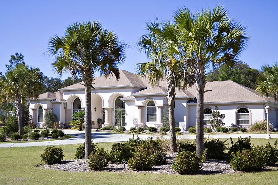 Home Insurance - Luxury Mansion WIth Palm Trees In South Carolina