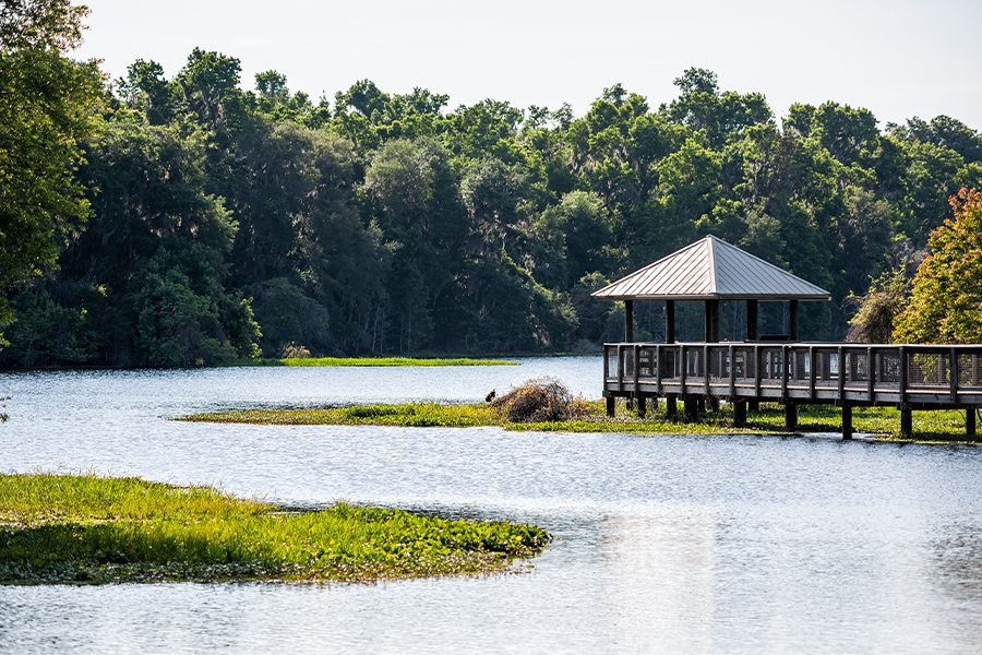 Newberry, FL - Landscape of Wooden Boardwalk Gazebo in Marsh in Paynes Prairie Preserve State Park in Gainesville, Florida