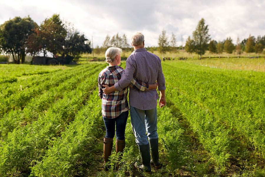 Specialized Business Insurance - Older Couple Looking Over the Welfare of the Farm