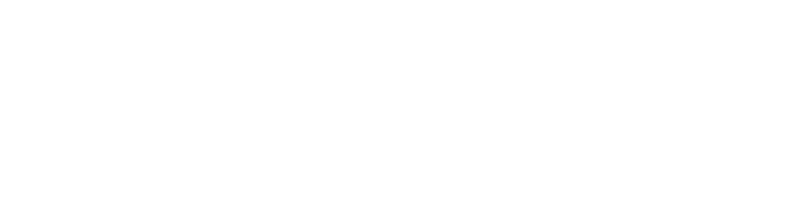 Turner Houser Insurance Group - Logo 800 White