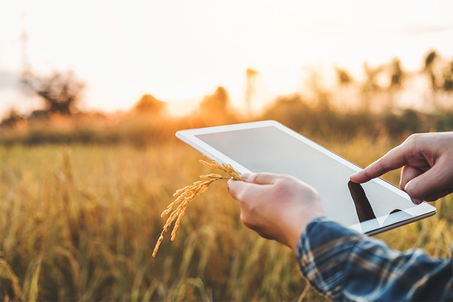 Client Center - Farmer Standing in His Field of Wheat Holding a Tablet