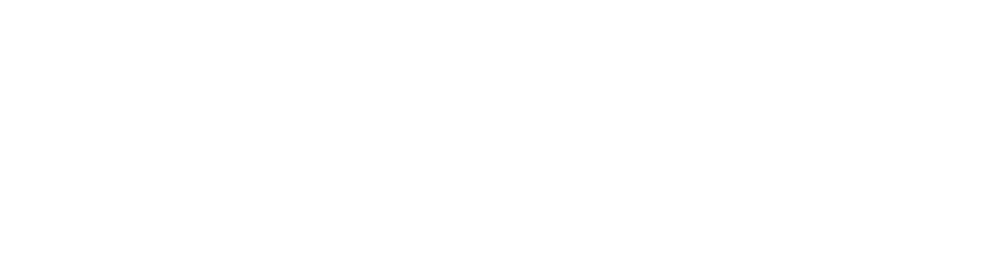Partner - Beyond Insurance Global Network White Small