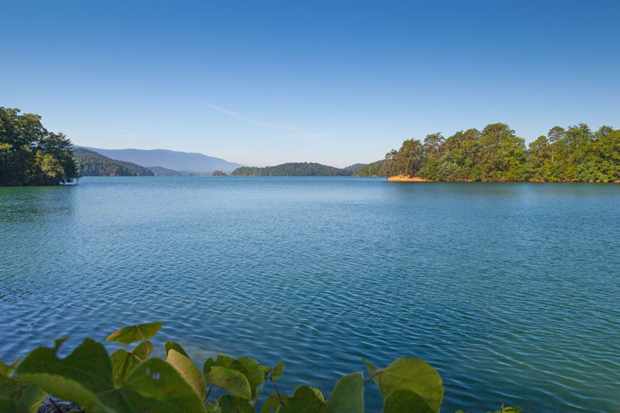 About Our Agency - Scenic View of the Lake in Tennessee
