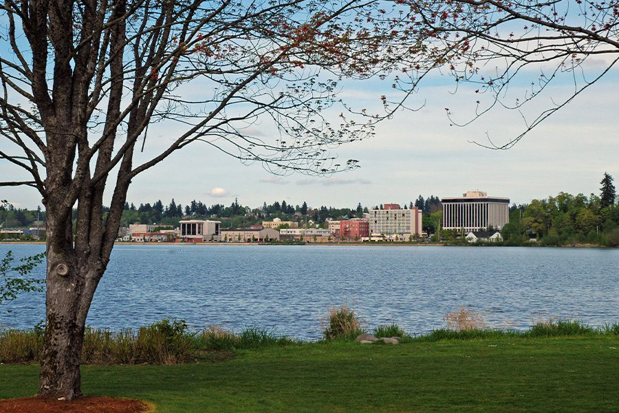 Shelton, WA - View from Trees and River with Washington State Capital in the Background