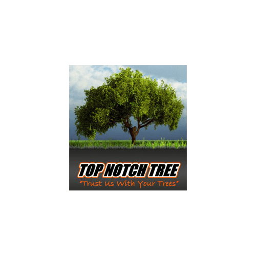 Logo - Top Notch Tree
