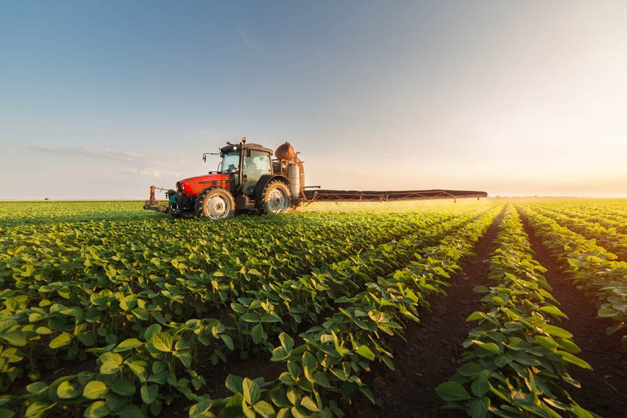 Business Industry Specialties - Farmer Tending to Soybeans in the Summertime at Sunrise