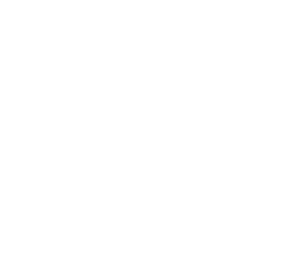 Partner IAB Icon