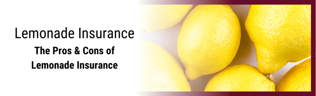The Pros and Cons to Lemonade insurance app.