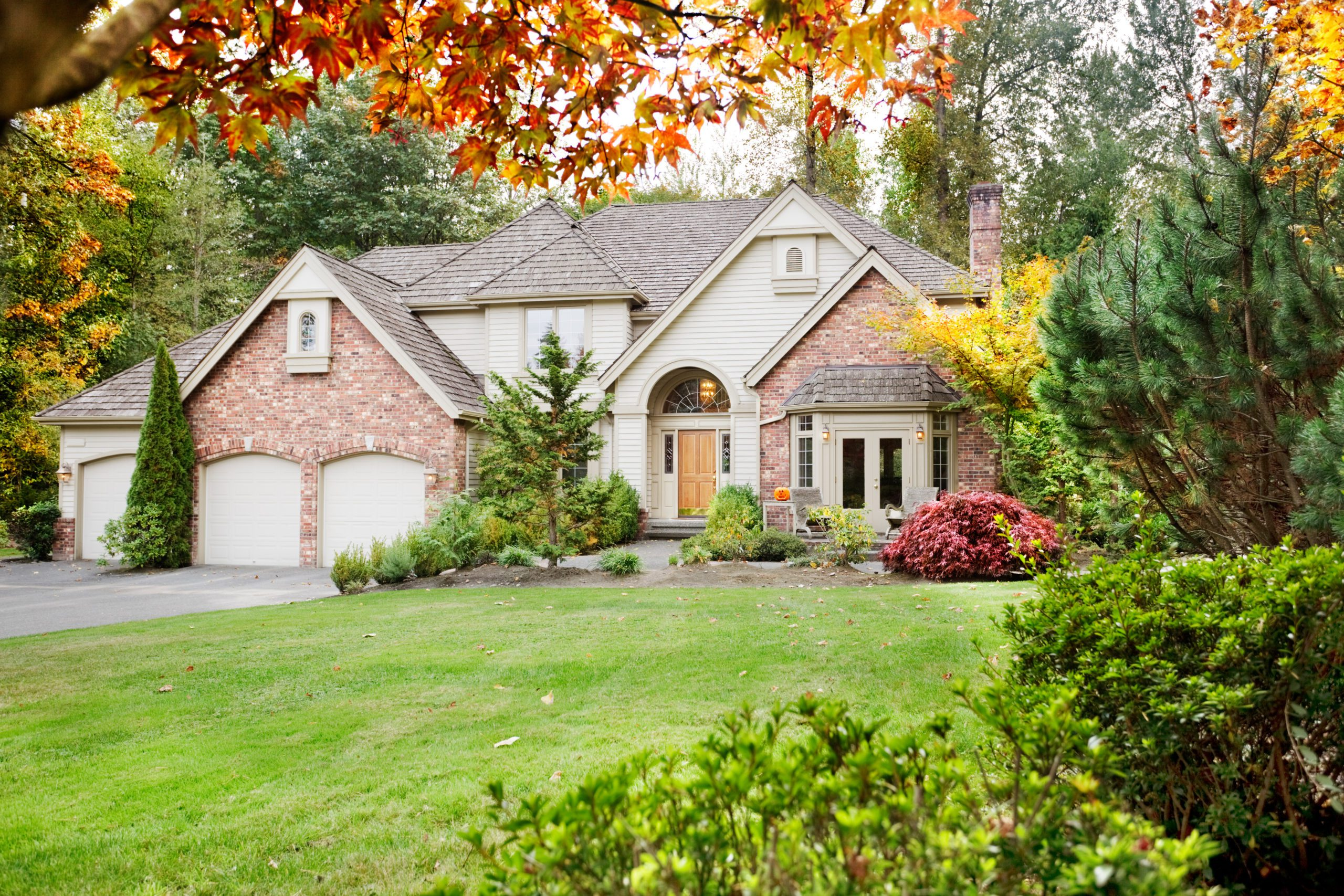 Blog - Suburban home from the front garden in early Autumn as the leaves begin to turn