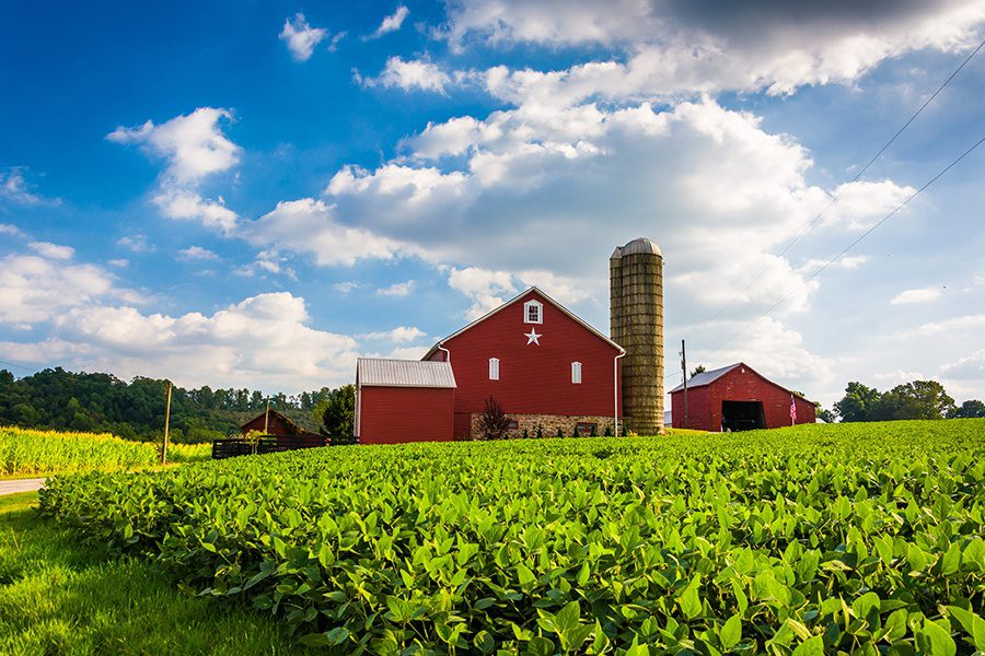 Specialized Business Insurance - Beautiful Farm Field and Barn on a Farm near Jefferson GA on a Sunny Day with Blue Sky and Trees in the Distance