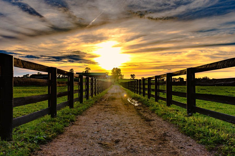 About Our Agency - Kentucky Horse Farm with a Fence Leading into the Farm with a Sunset