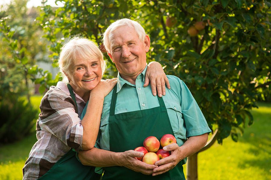 Specialized Business Insurance - Senior Couple in Professional Green Aprons Smile as They Collect Apples From Their Commercial Orchard