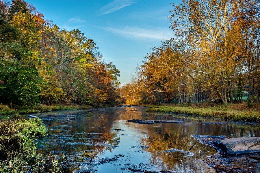Contact - View of Creek in Pennsylvania Nature on a Sunny Day