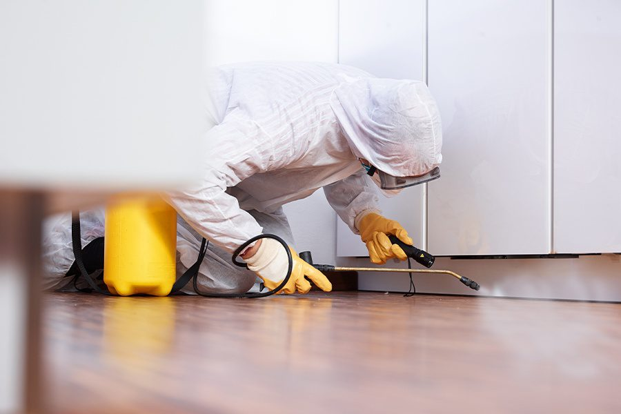Pest-Control-Insurance-Pest-Control-Worker-in-the-Kitchen-of-a-Home-Spraying-Pesticide-Under-the-Kitchen-Cabinets