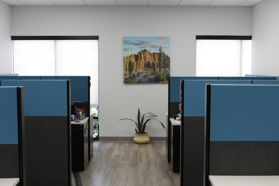 Office Tour - Main Office Area with Black and Blue Cubicle Dividers, Large Windows, Potted Plant, and Southwest Artwork